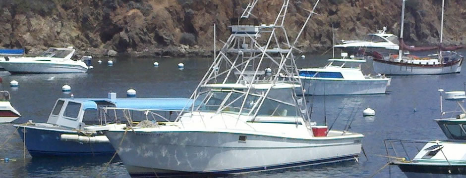 Southern california fishing boat charters for Southern california fishing charters