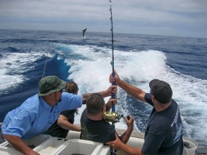 Local and long range shark charters southern california for Southern california fishing charters